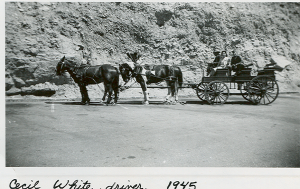 My grandfather driving a stagecoach.